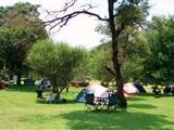 Wild Frontier Camping and Caravanning