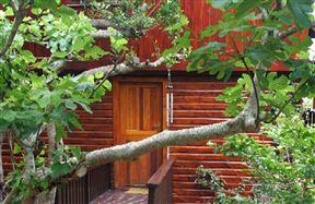 Mount Joy Cottages - SPID:1009975