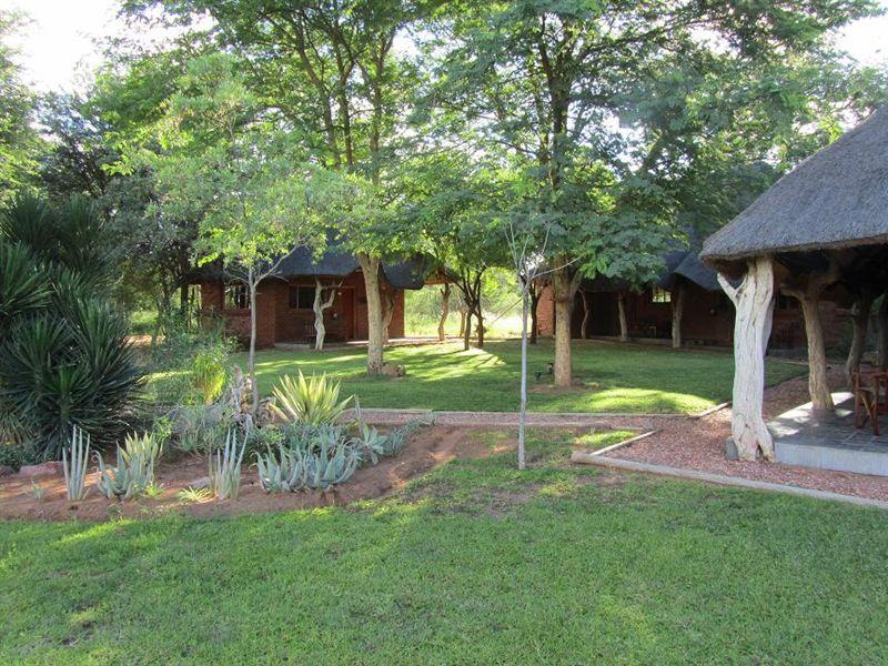 Bushmen/san safari lodge