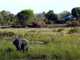 accommodation kruger park featured property 7