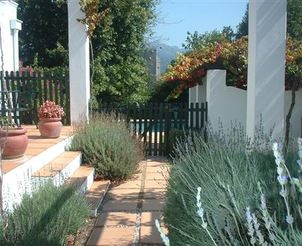 The apartments are approached along a pathway, lined with aromatic lavender.