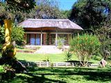 Palm Cottage accommodation