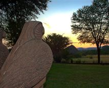 The eagles watching the sunrise over the Magaliesburg Mountains.