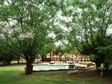 Kwa Manzi Guest Farm accommodation