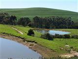 Taim-Go-Loer Private Guest Farm