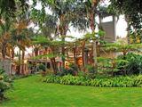 Villa Amor-1138603