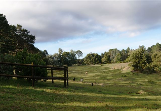 Angels Rest Farm