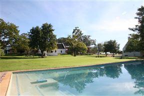 Nelson Wine Estate