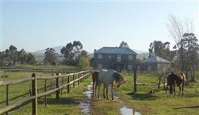 Schoongezicht Summer Country House