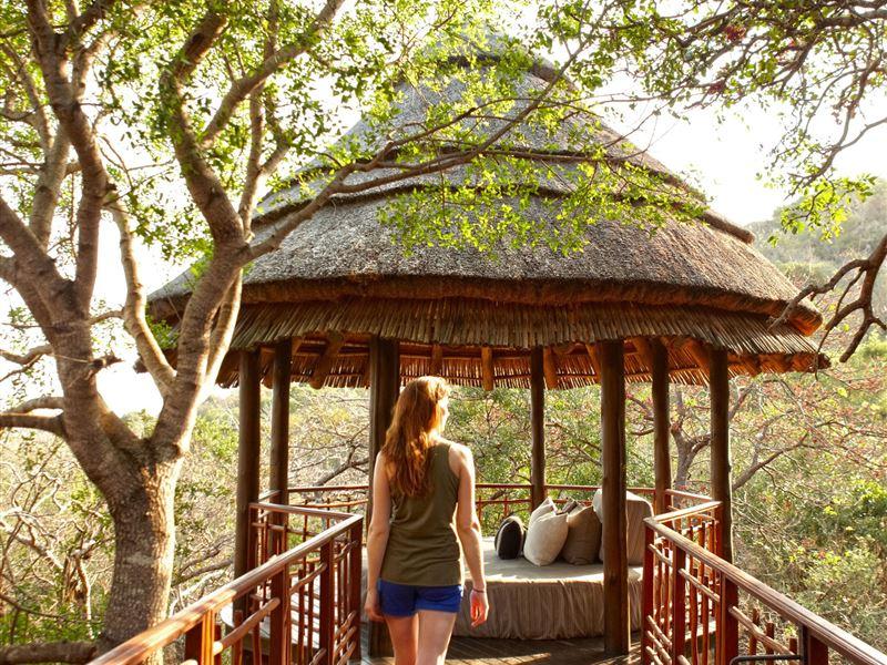 Thanda Private Game Reserve - SPID:11663