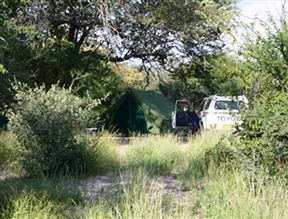 El-Fari Bush Camp