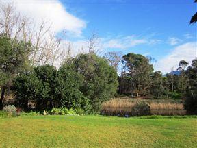 Corgi Park