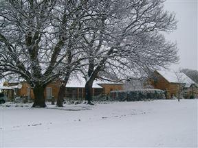 Die Ou Stal Cottage and Stoepkamer Photo