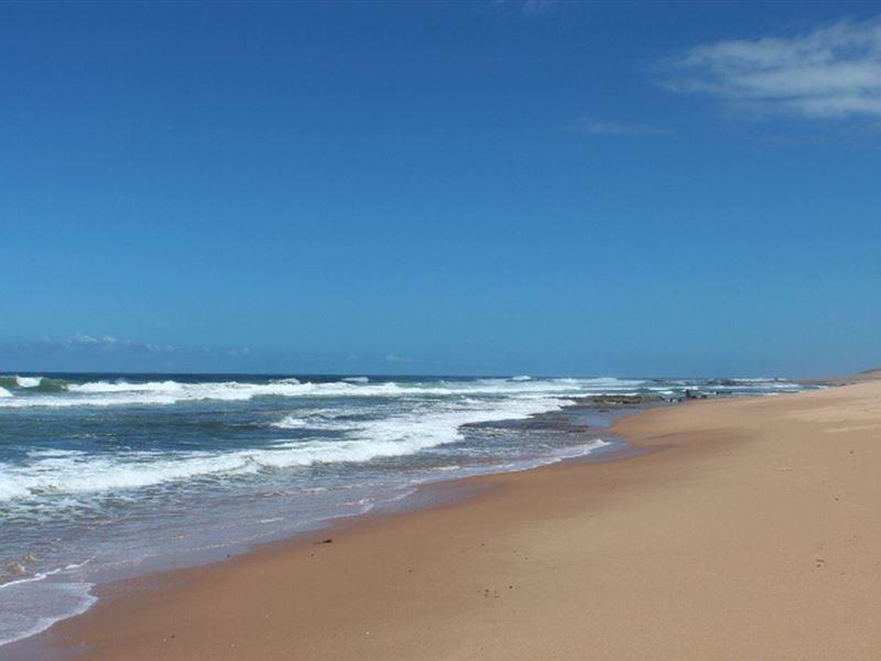 pet friendly Zinkwazi Beach