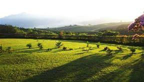 Hadeda Mountain Guest Farm