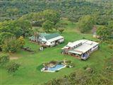 B&B125817 - South Africa