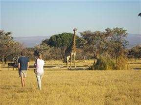 Matamba Bush Campsite Photo