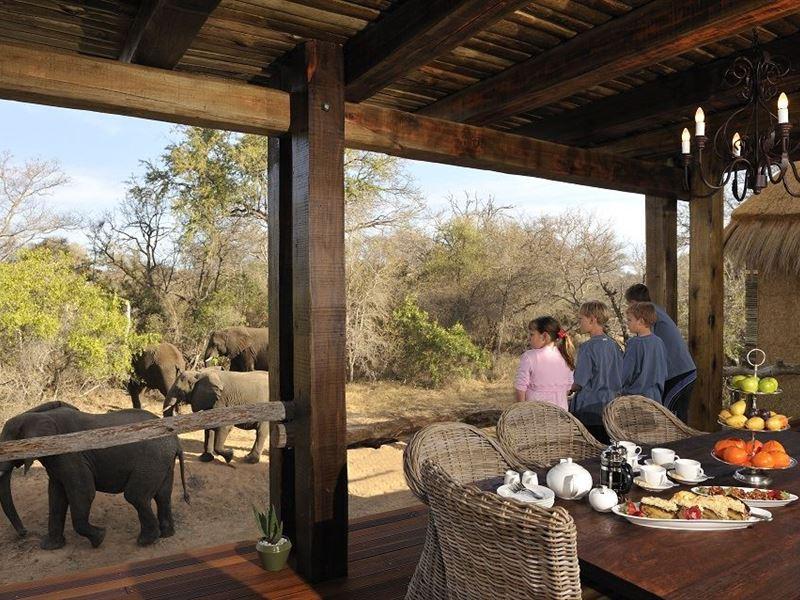 Jabulani Safari - SPID:1290691