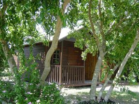 Toad Tree cabin - Sleeps 2 people