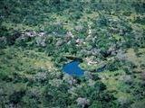 Djuma Game Reserve Bush Lodge accommodation