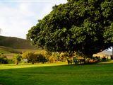 Mount Ingwe Lodge