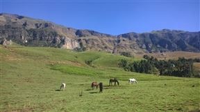 Greenfire Lodge Drakensberg