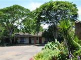 Birds of Paradise accommodation