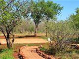 MY Private Bushcamp-1377182