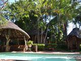 B&B1386595 - Mapungubwe Region