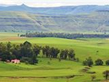 B&B1407407 - Eastern Cape