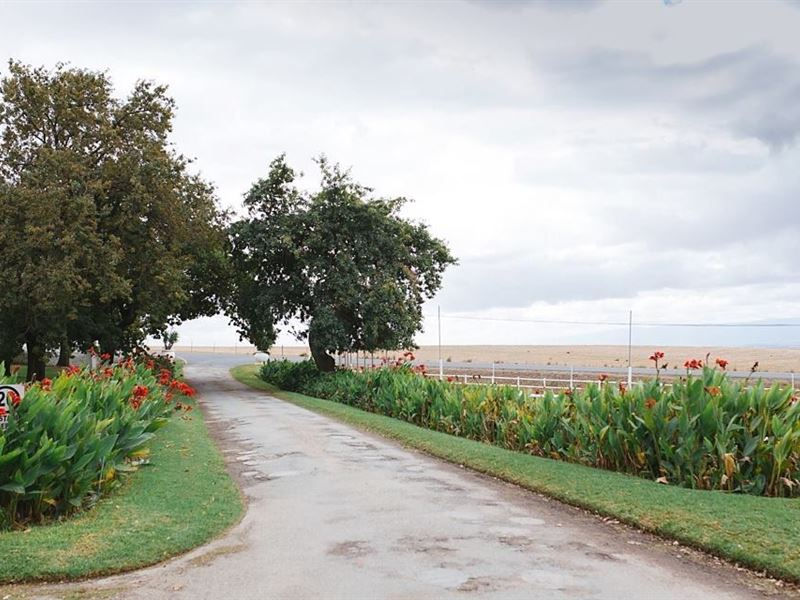 Groenrivier - SPID:1425365