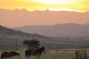 Drakensview Self-catering