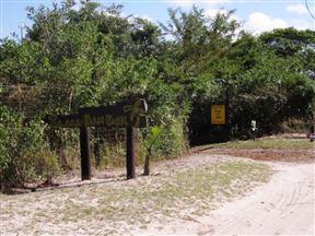 Ilala Palm Park