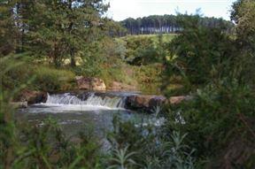 Zwakala River Retreat Photo