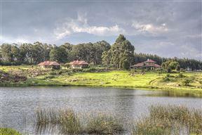 Springgrove Estate
