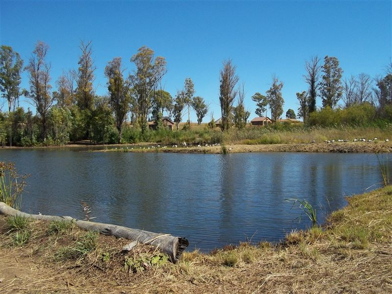 Bernallys Fishing Lodge Magaliesburg Your Cape Town  : g504233 from www.yourcapetown.co.za size 800 x 600 jpeg 110kB