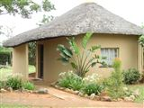 B&B1608399 - Limpopo Province