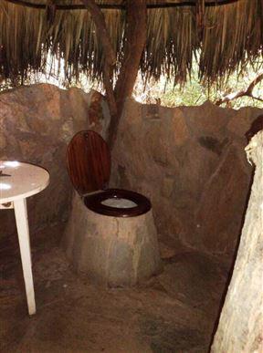 Lion King Bush Camp