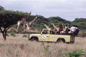 Bonamanzi Game Reserve image9