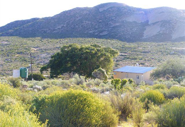 Morewag Guest Farm