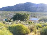 B&B1649549 - Namaqualand Road Trip