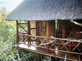 Lion Tree Bush Lodge-1672269