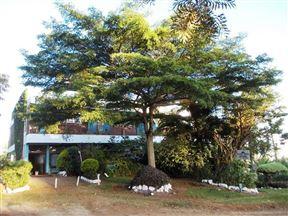 Transit Motel Chogoria