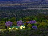 B&B1717598 - Limpopo Province