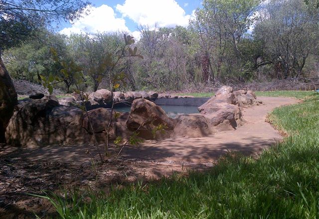 Umbabala Bush Camp