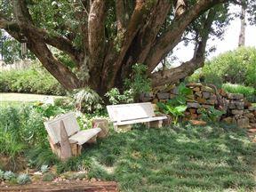 The Drakensberg Terrace