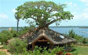 Kilwa Seaview Resort