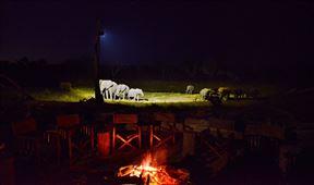Khulu Bush Camp