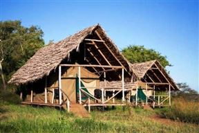 Ikoma Wild Camp & Cottages