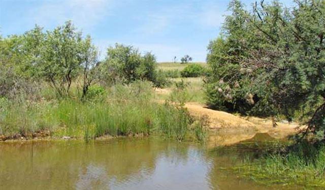 Leeuwenkloof Environmental Facility